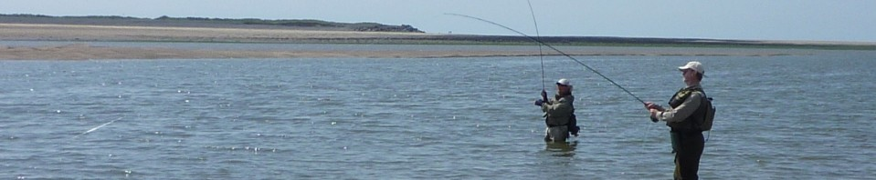 Fly fishing in devon crediton fly fishing club news for Fly fishing clubs